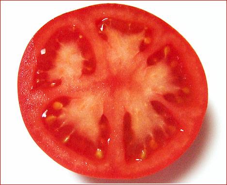 トマトの画像 p1_13